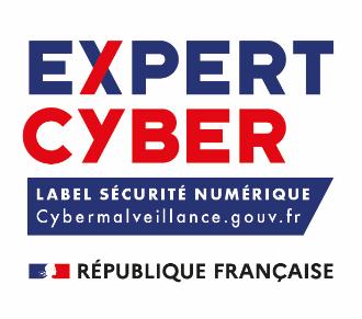 expert cyber